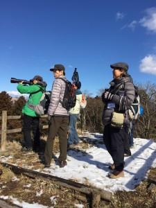 野鳥観察9